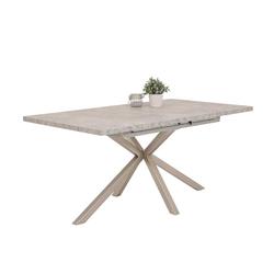 Esszimmer Tisch in Beton Grau Kulissenauszug