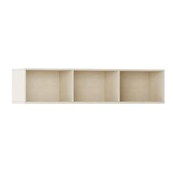 Bücherregal integro mit regalen, niedrig, birke