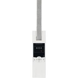 Rademacher RolloTron Standard Unterputz-Gurtwickler