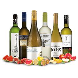 Sauvignon-Blanc-Weltreise-Weinpaket
