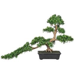 Kunstbonsai Bonsai Podocarpus Bonsai, Creativ green, Höhe 130 cm