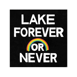 Lake - Forever Or Never (CD)