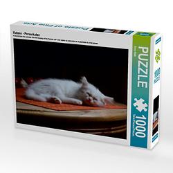Katzen - Perserkatze Lege-Größe 64 x 48 cm Foto-Puzzle Bild von Arno Klatt Puzzle