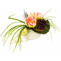 Kunstpflanze Gesteck Seerose in Muschel Seerose, I.GE.A., Höhe 20 cm rosa