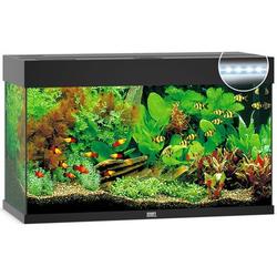 JUWEL Rio 125 LED Aquarium, 125 Liter, schwarz
