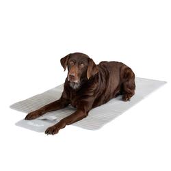 Pets Club Tierdecke Hundedecke Schutzdecke Hund Auto Kofferraumdecke grau