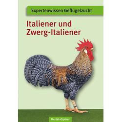 Italiener und Zwerg-Italiener als Buch von Günter Wesch