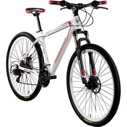 Galano Toxic 29 Zoll Mountainbike Hardtail MTB Fahrrad Scheibenbremsen Shimano Tourney... weiß/rot
