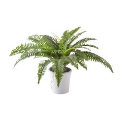 Kunstpflanze Kunstpflanze, Creativ green, Höhe 70 cm