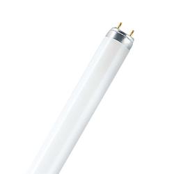 Osram L 36 W/954 daylight - EEK: A