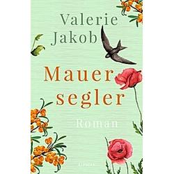 Mauersegler. Valerie Jakob  - Buch