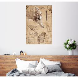Posterlounge Wandbild, Magisches Tierwesen - Niffler 40 cm x 60 cm