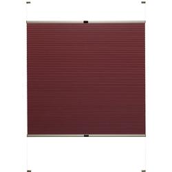 Doppelplissee nach Maß Rena, Good Life, verdunkelnd, mit Bohren, verspannt, bronzefarbene Profilschiene rot