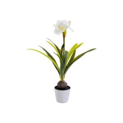 KARE Dekoobjekt Deko Pflanze Amaryllis Weiß 78cm