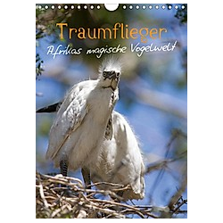 Traumflieger - Afrikas magische Vogelwelt (Wandkalender 2021 DIN A4 hoch) - Kalender