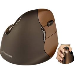Evoluent VerticalMouse4 VM4SW Small Funk Ergonomische Maus Optisch Ergonomisch Braun