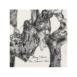Becca Stevens - BECCA STEVENS And THE SECRET TRIO (CD)