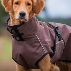fit4dogs Active Cape LIGHT Hundemantel, Rückenlänge 63,5 cm, braun