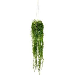 Kunstpflanze Seneciohänger, I.GE.A., Höhe 75 cm, Mit Hängeampel