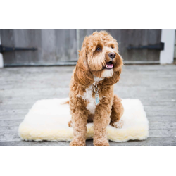 Huggle Hound Fleece Mat Extra Large