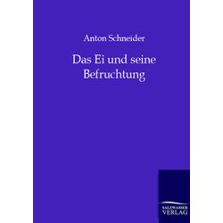 Das Ei und seine Befruchtung als Buch von Anton Schneider