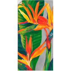 Artland Wandbild Paradiesvogel II, Pflanzen (1 Stück) 75 cm x 150 cm