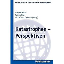 Katastrophen - Perspektiven - Buch