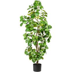 Künstliche Zimmerpflanze Banon Eukalyptus, Leonique, Höhe 120 cm