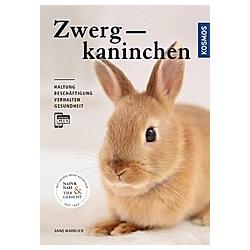 Zwergkaninchen. Anne Warrlich  - Buch