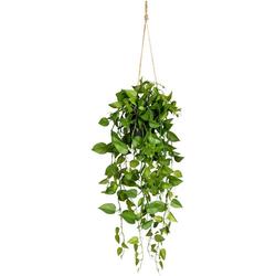 Kunstranke Philodendronhänger Philodendron, Creativ green, Höhe 75 cm, im Hängetopf