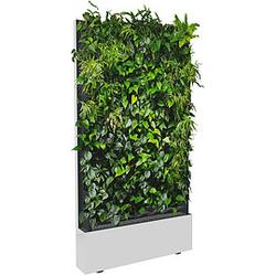 C+P Pflanzenwand auf Füßen, mit Trays für einseitige Bepflanzung, b120xt40xh232cm