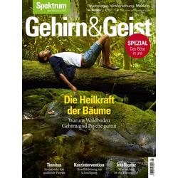 Gehirn&Geist 8/2019 - Die Heilkraft der Bäume: eBook von