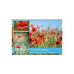 Mohnblumen (Tischkalender 2021 DIN A5 quer)