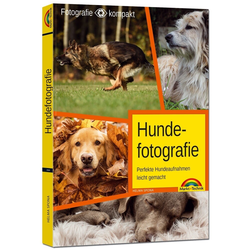 Hundefotografie - Perfekte Hundeaufnahmen leicht gemacht.: Buch von Helma Spona
