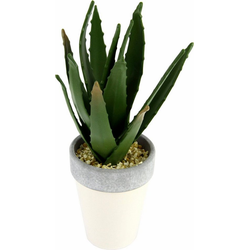 Kunstpflanze Agave in Topf 27/12 cm Agave, I.GE.A., Höhe 27 cm