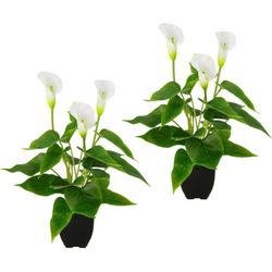 Kunstpflanze Callapflanze Calla, Höhe 40 cm