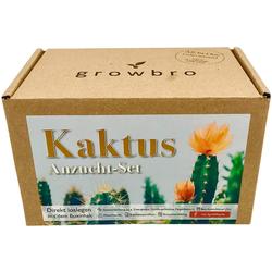 Kunstkaktus Kaktus Anzuchtset inkl. Sprühflasche, Geburtstagsgeschenk, Geschenke für Frauen & Männer, Gastgeschenk, Zimmerpflanzen,, growbro