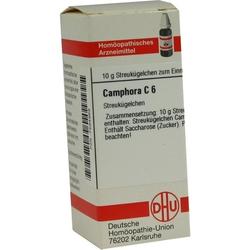 CAMPHORA C 6