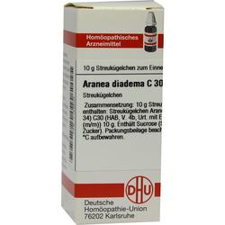 Aranea Diadema C 30 Globuli