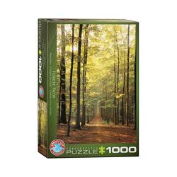 EUROGRAPHICS Puzzle EuroGraphics 6000-3846 Waldweg 1000 Teile Puzzle, Puzzleteile bunt
