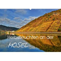 Herbstleuchten an der Mosel (Wandkalender 2021 DIN A2 quer)