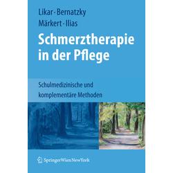 Schmerztherapie in der Pflege: Buch von