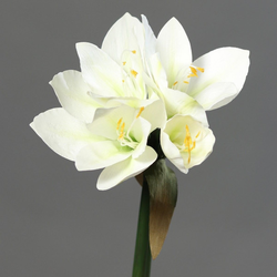 Kunstblume Amaryllis (H 30 cm)
