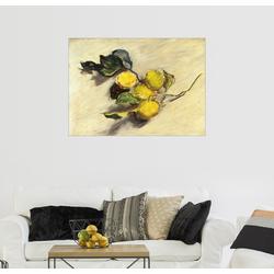 Posterlounge Wandbild, Zweig eines Zitronenbaums 80 cm x 60 cm