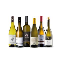 Must have Chardonnay Box - 6 Chardonnay Weine von höchster Qualität