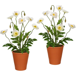 Künstliche Zimmerpflanze (2 Stück), Kunstpflanzen, 52197833-0 weiß H: 38 cm weiß