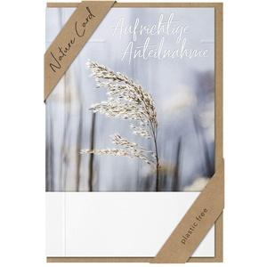 BSB Trauerkarte zur Beerdigung - Natur Card - Ähre - Umschlag Kraftpapier, 691008-2