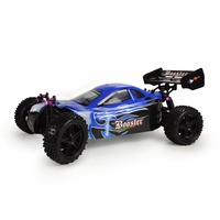 AMEWI Buggy Booster RTR 22031