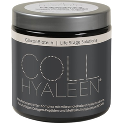 COLLHYALEEN