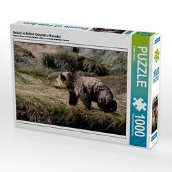 Grizzly in British Columbia (Kanada) Lege-Größe 64 x 48 cm Foto-Puzzle Bild von ROBERT STYPPA Puzzle